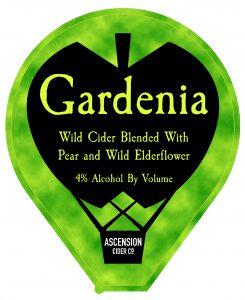 Best Elderflower Cider